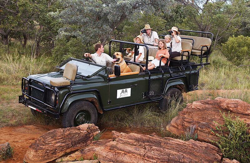 Family enjoying game drive